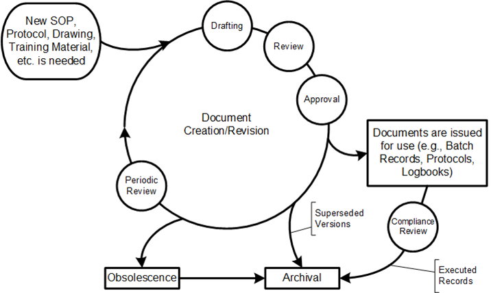 document lifecycle